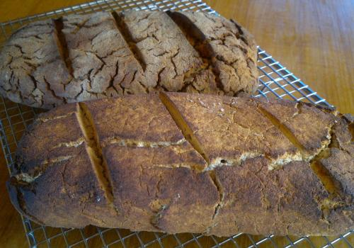 Buckwheat only sourdough - early attempt.
