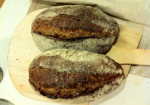 Sourdough Wholewheat/rye with sunflower seeds