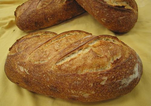 IMG_5587.JPG Another view  White Bread ~ 30% sourdough flour content Final water ~ 70%