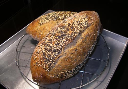 Seeded Multi-Grain 1