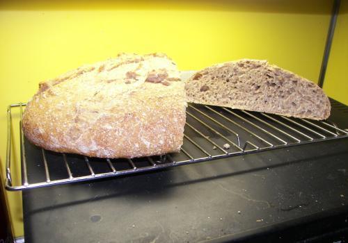 Whole wheat 2 3 2012 027
