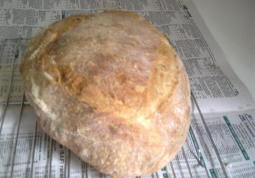 latest loaf