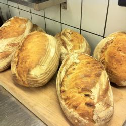 whole wheat Loafs I did a couple of years back.